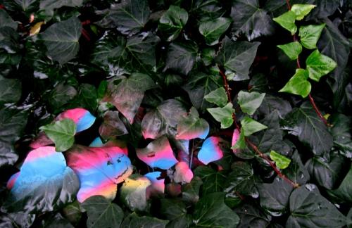 spray-painted-leaves2