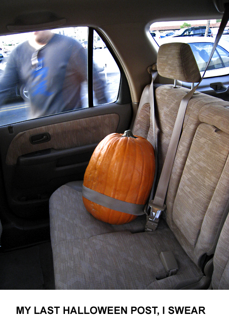 Pumpkin, carseat