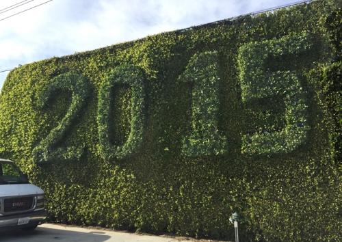 2015 topiary